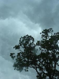 storm rages overhead