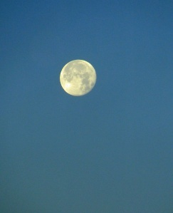 Nearly full moon, just an hour or two before setting