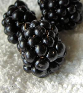 Blackberries on white towel