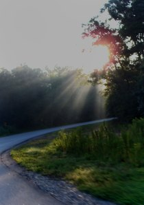 rays shining on roadway