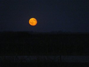 Moonrise over southern South Dakota
