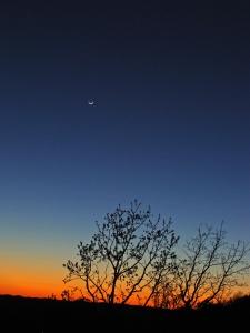 Crescent moon against sunset sky