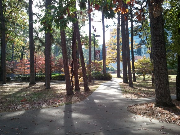 DAPPLED -- Afternoon sun threads through the trees near the fountain plaza at the University of Arkansas-Little Rock.