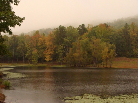 Soft October sunset at the pond.