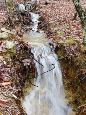 Closer to the bottom of the mountain, the stream and its falls widened a bit.