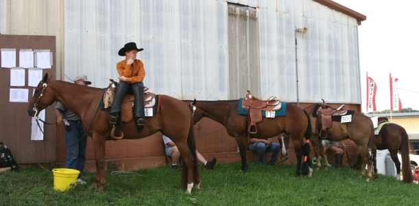 Horse parking. Contestant waits his turn in the ring during a 4-H horse show.