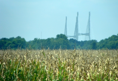 Cable stayed bridge rises over cornfield.