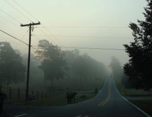 Foggy morning in rural Arkansas.