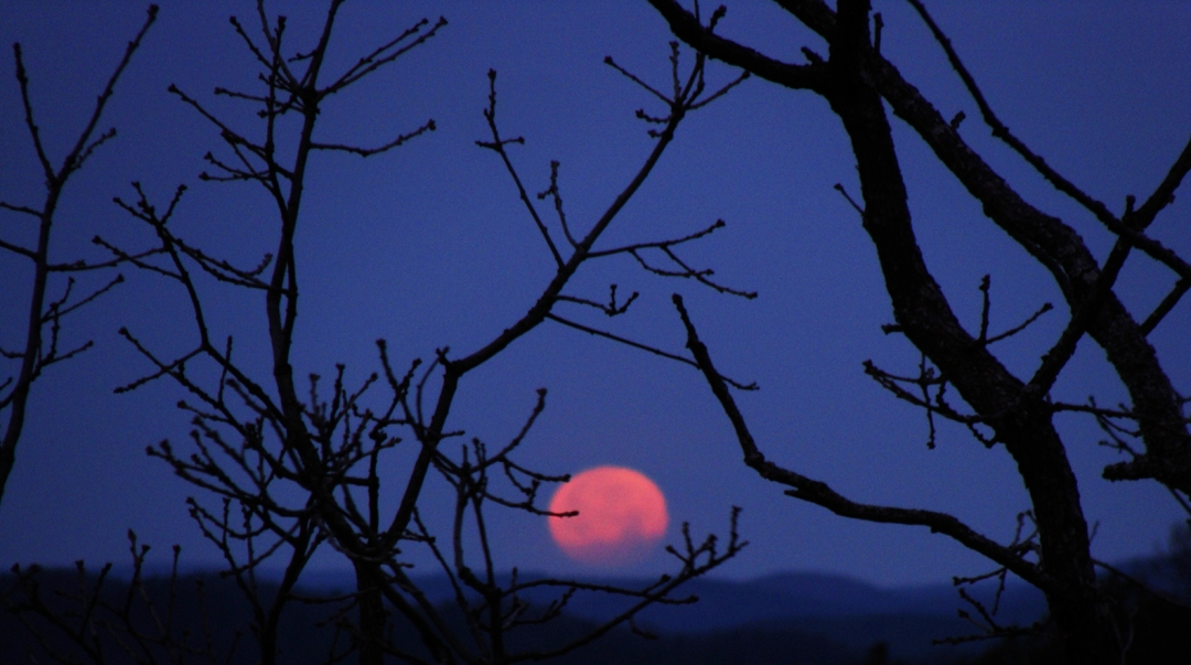 Red moon setting