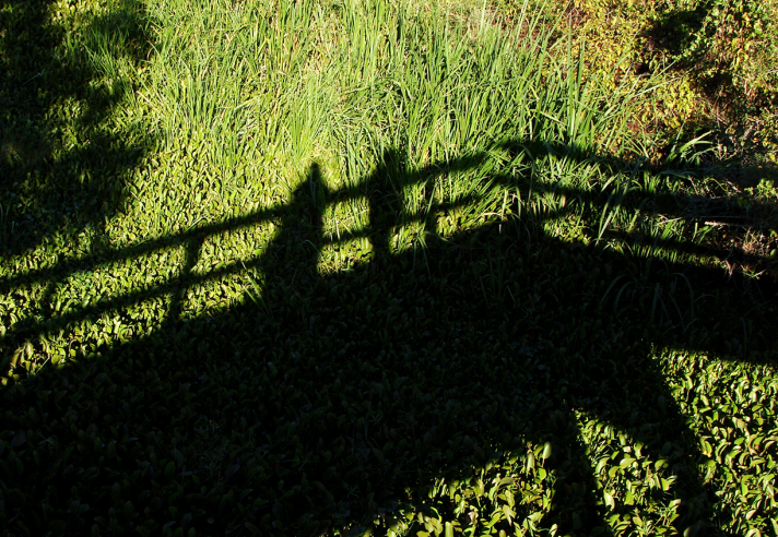 Shadow of a bridge