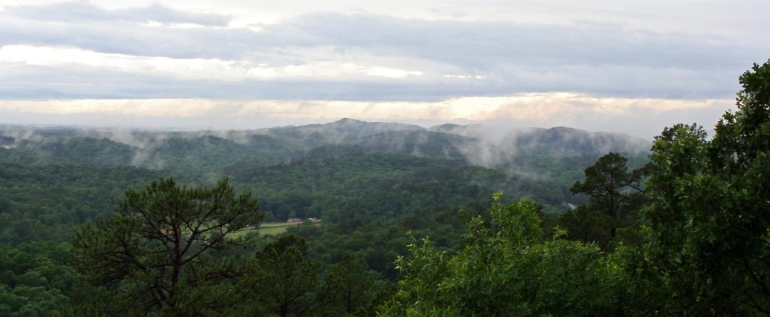 Mountain mist.