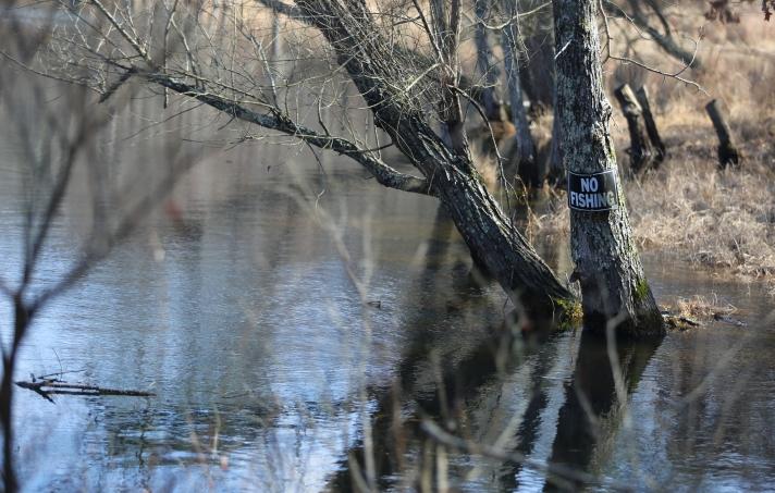 no fishing sign on tree