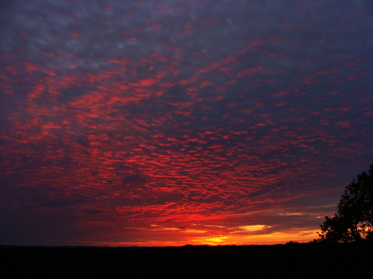 Red spattered sunset