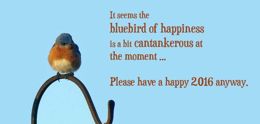 2016-Bluebird.png