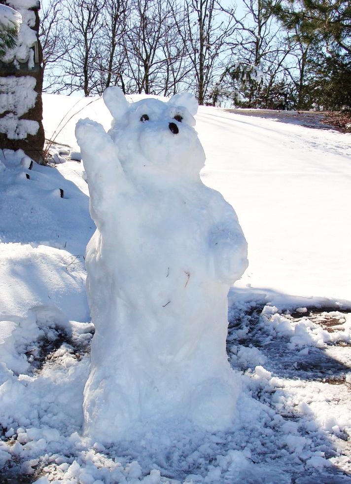 1-22-Snowbear2-web.png